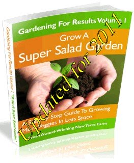 Grow a Super Salad Garden