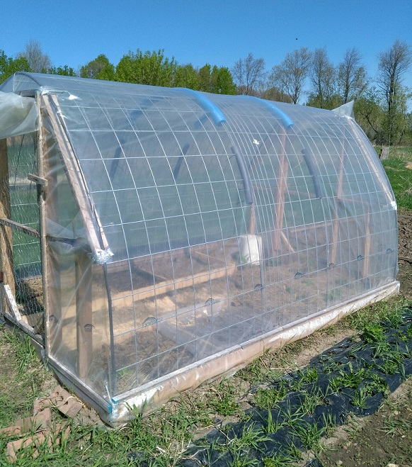 my lean-to greenhouse