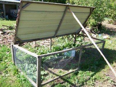 how to build joel salatin chicken tractor